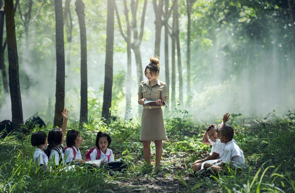 apprendre avec plaisir dans la forêt